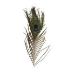 Plumes de paon - 25 cm - 3 pces