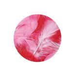 Plume décorative 3-10cm sachet de 10 assorties - Rouge