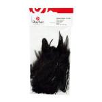 Plumes - Noir - 10-15 cm - 2 g