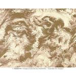 Papier Italien 50 x 70 cm 85 g/m² Marbré écru et or