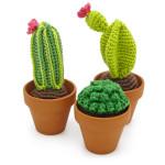 Crochet Kit cactus