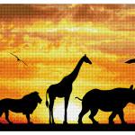 Broderie Diamant kit  intermediaire African sky