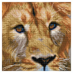 Broderie Diamant kit  intermédiaire Lion du Serengeti